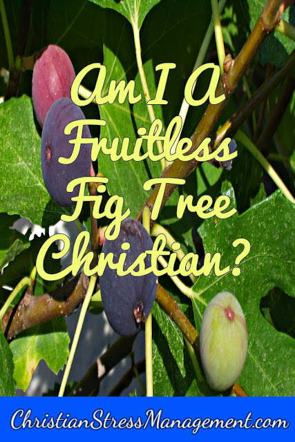 Am I a fruitless fig tree Christian?