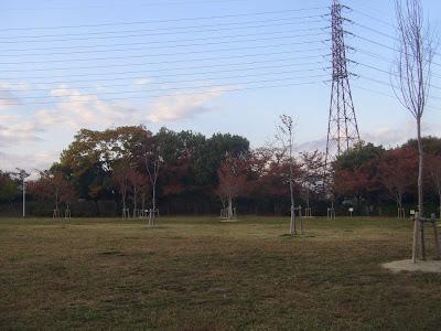 寝屋川公園 芝生広場 バーベキュー指定区域