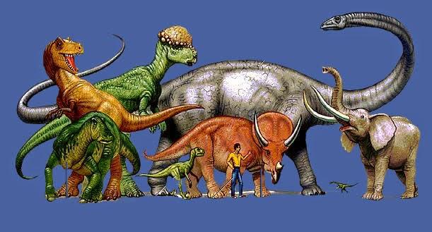Animales que ya no podemos ver: 8 Especies Extintas