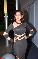 Pranitha Subhash in a skin tight backless brown gown at 64th Jio Filmfare Awards South ~  Exclusive 083.JPG