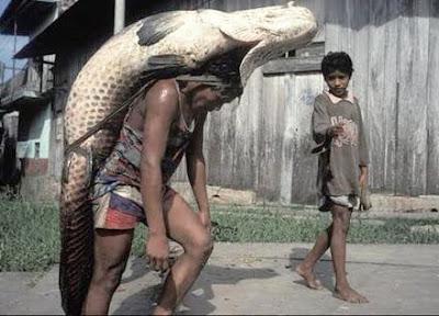 Tabahnya Kaki Pancing, ikan besar, Joran,