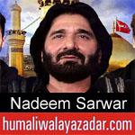https://www.humaliwalyazadar.com/2017/09/nadeem-sarwar-nohay-1983-to-2018.html