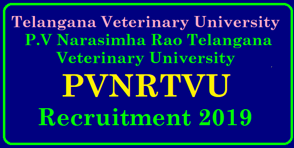 P.V Narasimha Rao Telangana Veterinary University Recruitment 2019 Telangana vetarnary university recruitment 2019 Apply here | TS P.V Narasimha Rao Telangana Veterinary University Recruitment 2019 తెలంగాణ వెటర్నరీ వర్సీటీ లో ఉద్యోగాలు తెలంగాణ వెటర్నరీ వర్సీటీ లో ఉద్యోగాల గురుంచి :/2019/01/PVNRTVU-PV-Narasimha-rao-telangana-veterinary-university-recruitment-2019-walk-in-tsvu.nic.in.html