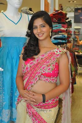 Nisha in Pink Saree sexy hot Indian Girl