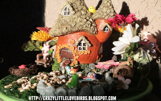 Do-It-Yourself Fairy Garden For Kids