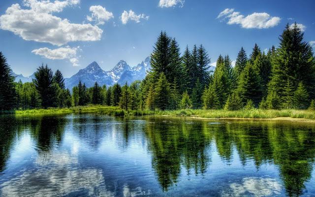 nature-environnement-proteger-la-planete