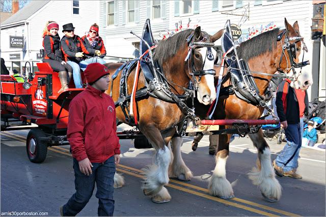 Caballos en el Desfile de Acción de Gracias de Plymouth