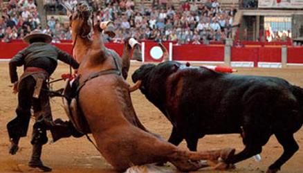 Sendo assim, penso, sinceramente, que esse chifre cravado na barriga do cavalo, NÃO deveria ter sido nele, que estava ali de inocente, mas sim em quem pode optar, por estar ali, ou não!