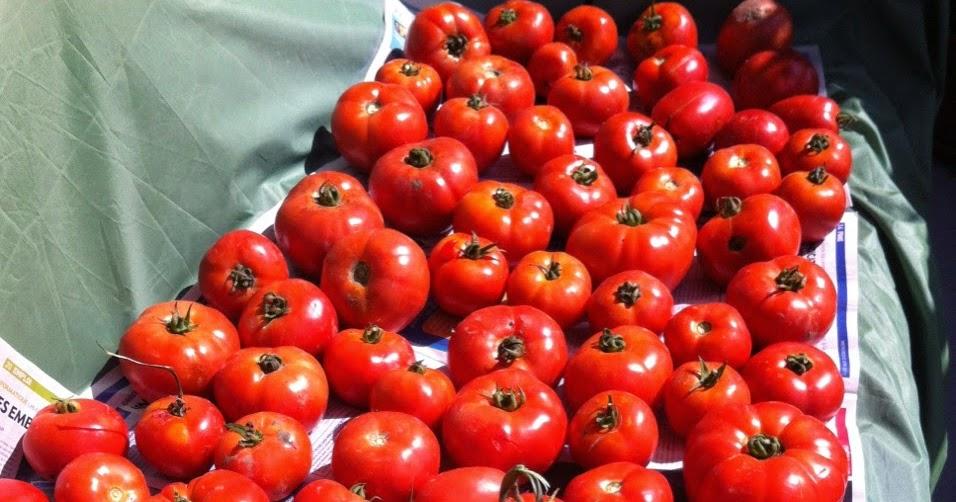 Le Blog De Cata Sauce Tomates Fait Maison Pour Pizza P Tes Viandes