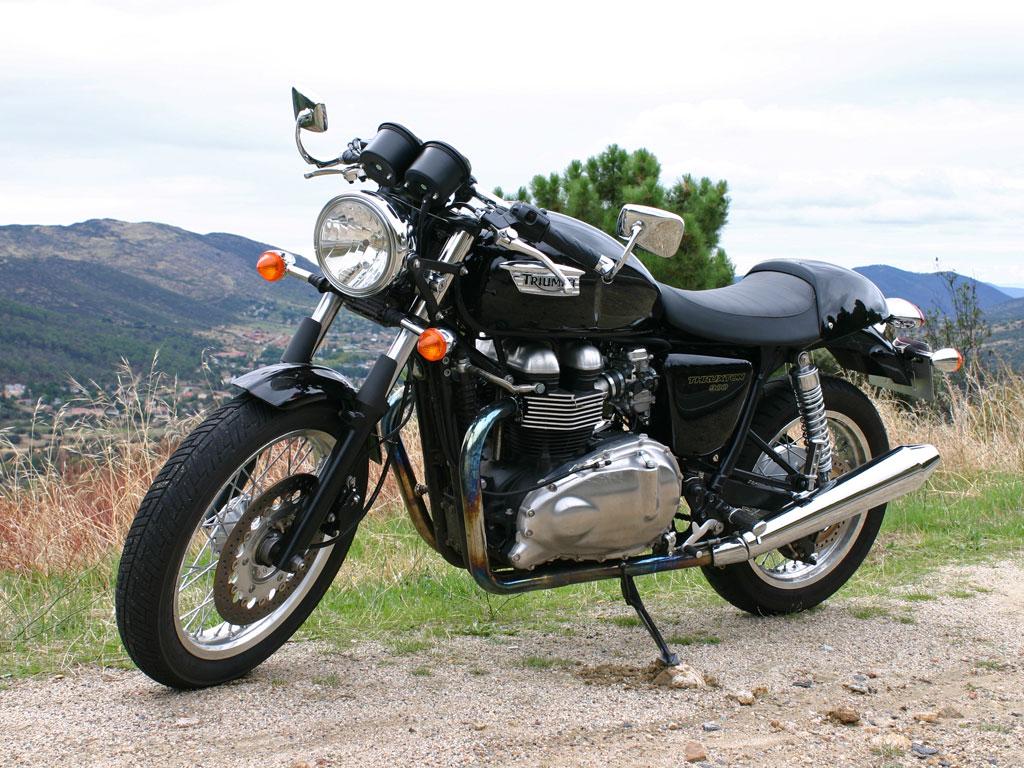 triumph thruxton 900, la prueba | millatrece
