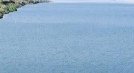 प्रायद्वीप भारत की सबसे लंबी नदी कौनसी है | Praydeep Bharat Ki Sabse Lambi Nadi