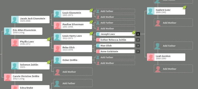 ancestry dna results family tree ancestry dna family tree