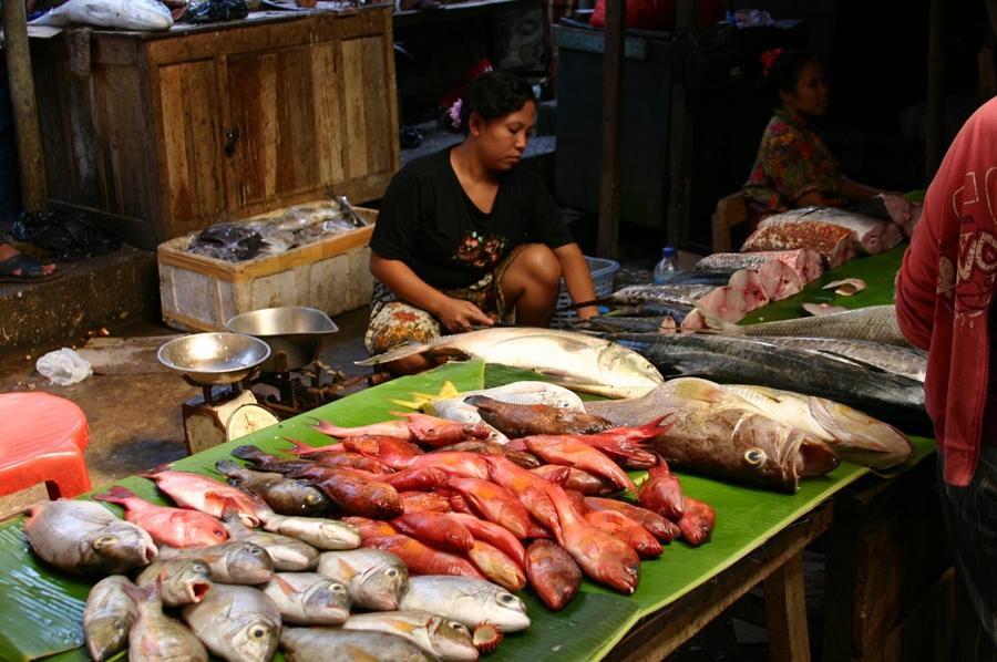 acc 시장의 생선들