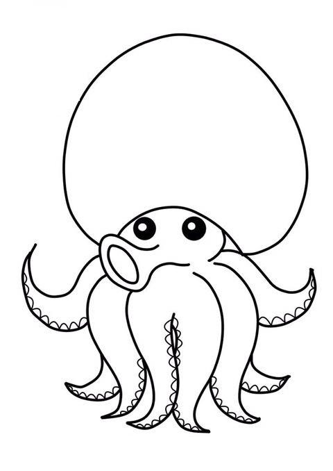 Tranh tô màu con bạch tuộc đơn giản