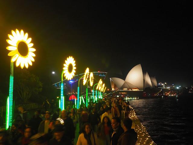Sunflowers and Opera House Vivid Festival Sydney