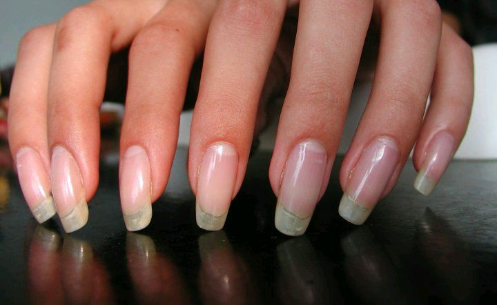 How Long Should Your Nails Be?! - StyleHub Daily