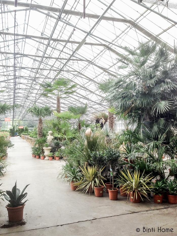 Tuincentrum het Oosten Aalsmeer - Binti Home