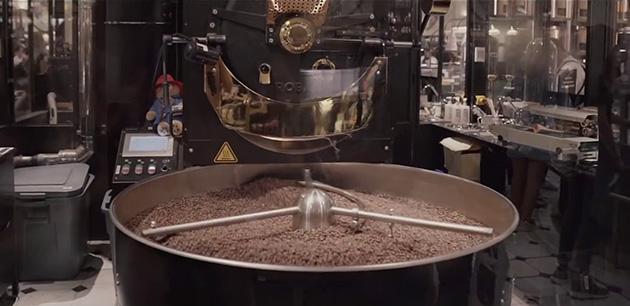 kopi luwak coffee, kopi luwak kahvesi ingiltere,WWW.KahveKafe.Net