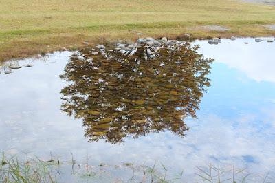 安曇野ちひろ美術館 水面にうつる木