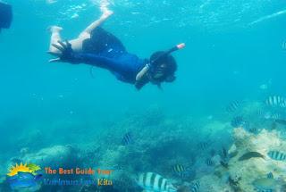 snorkeling wisatawan libur natal