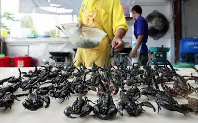 makanan dan kuliner ekstrim di China