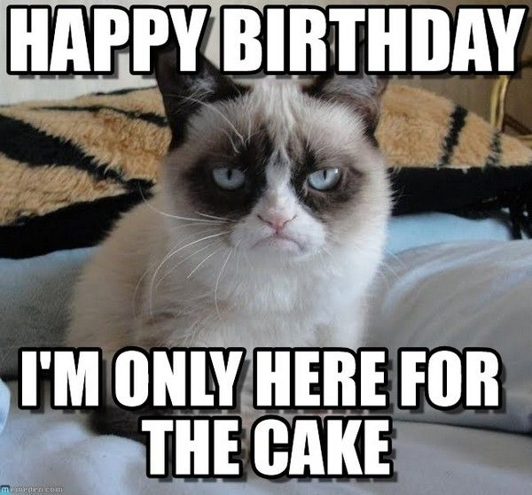 Funny Birthday Memes Home: Most Funniest Birthday Memes :: Let's Insult People