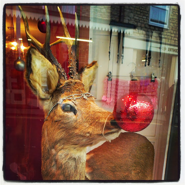 Reindeer in the window of Deadly is the Female Frome