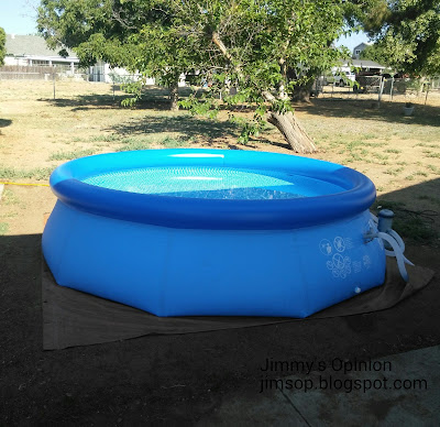 12 ft round above ground pool sitting in front of a small leaning tree.
