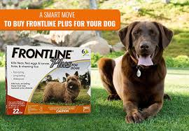 Reasons to Purchase Frontline Plus For Your Pets Through Online Shops