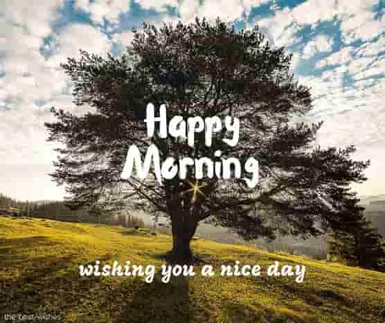 happy morning wishing you a nice day