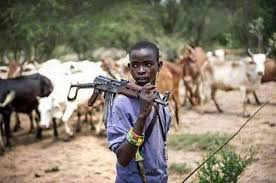 Suspected Fulani herdsmen kill five Delta farmers