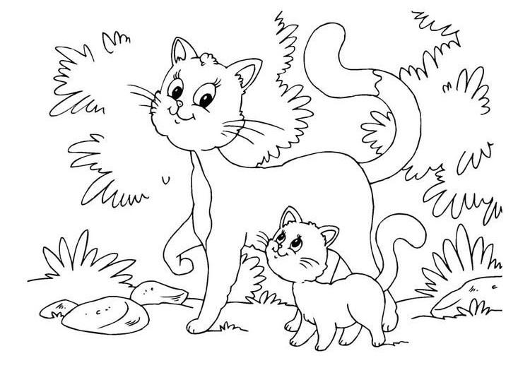 Tranh tô màu hai mẹ con mèo con
