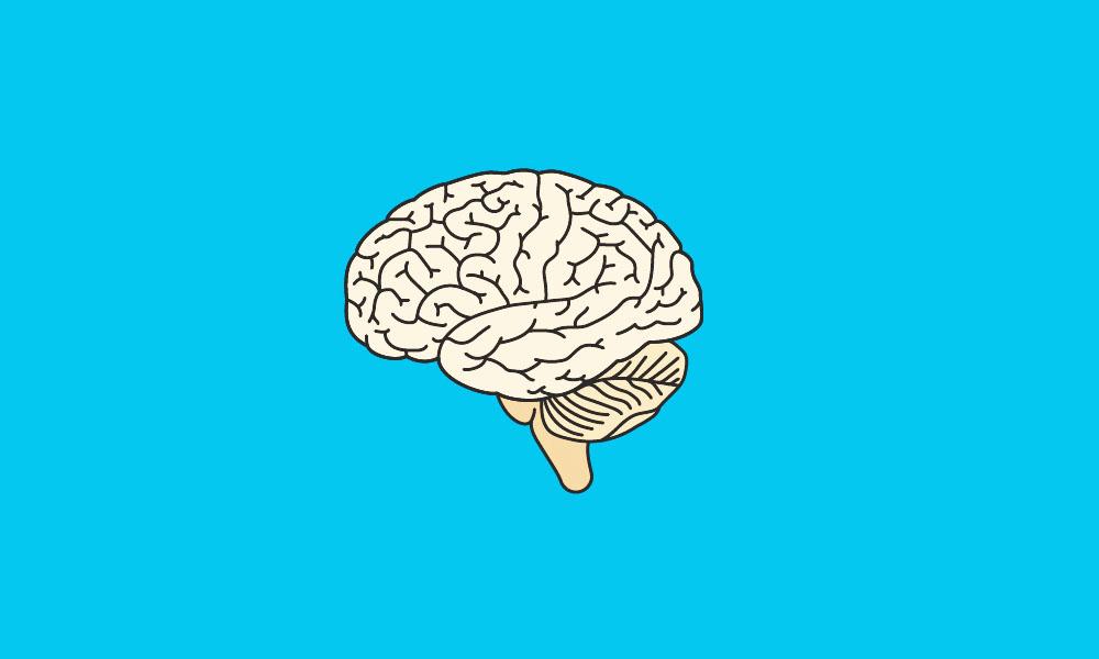 أهم الأسباب التي تدمر وتقوي خلايا المخ والعقل