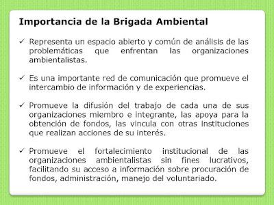 Importancia de la Brigada Ambiental