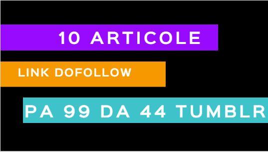 Articole platite pe blog - Advertoriale SEO Tumblr - Promovare optimizare google