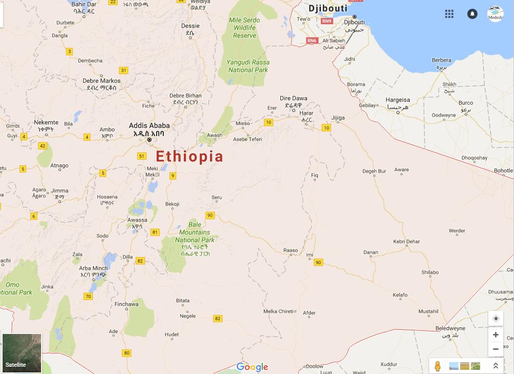 Medeshi News : Ethiopian gov't rehabilitating people