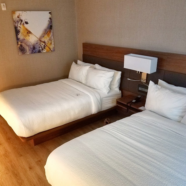 The AC Raleigh Hotel Rooms Offers Modern Comfort