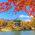 Dịch công chứng tiếng Hàn Quốc
