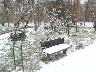 Snow, Cushion, Bench, Yambol City Park, Yambol,
