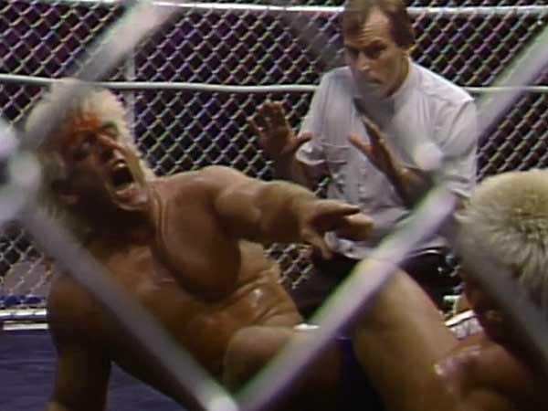 The Wrestling Insomniac: Ronnie Garvin: His NWA World Championship