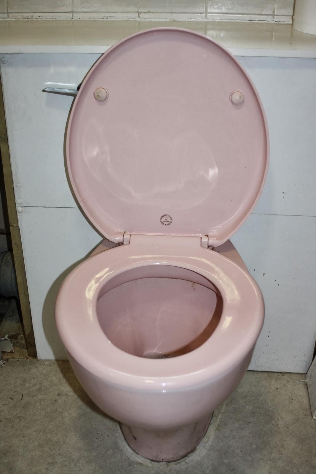 Toilet-new-house-bathroom