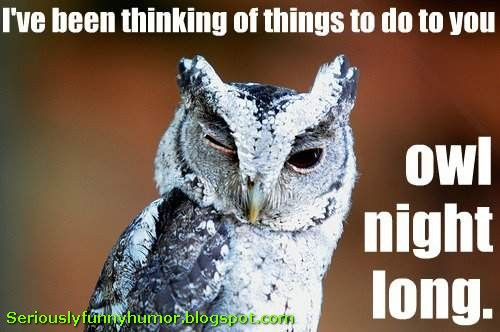 I've been thinking of things to do to you owl night long! ;) wink wink nod nod