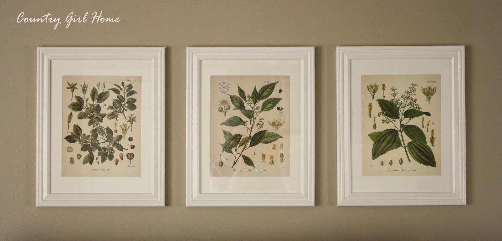 COUNTRY GIRL HOME : Free Botanical Printable Art