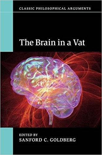 Hilary putnam brains in a vat essay