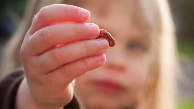 فائدة فوائد الزبيب الصحية والجمالية benefits-raisins+for