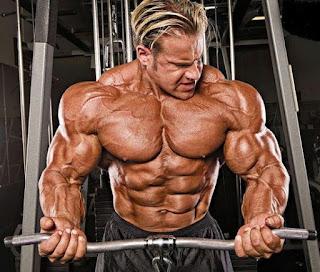 proteini muiki anaptyksi