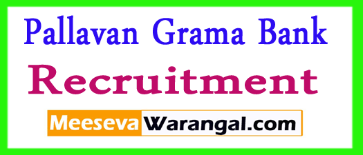 Pallavan Grama Bank Recruitment 2017