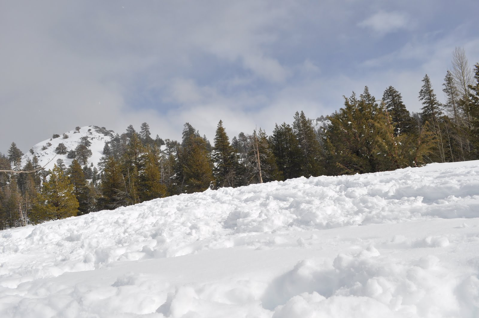 Potluri Travelling Blog : Tahoe snow storm (Arshiya Tahoe trip)