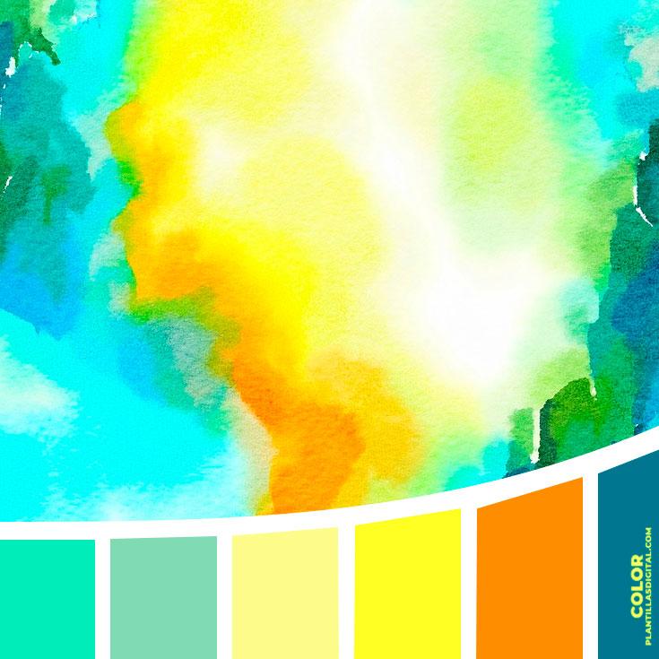 color_344