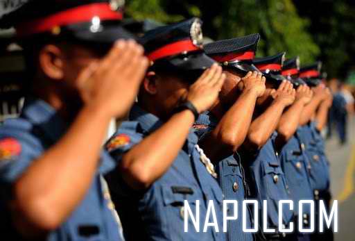 Hand Salute Napolcom